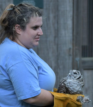Abby releases Barred Owl