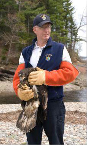 Ken about to release a young Bald Eagle