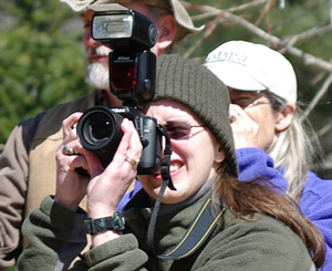 Glori photographs a Peregrine Falcon release